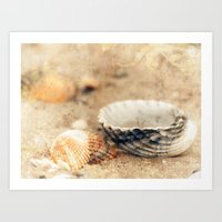 shells Art Prints featuring Shells by Joanna Pechmann