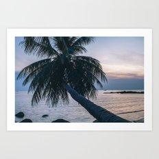 Palm Tree Koh Phangan Art Print