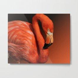 Ultimate Orange Metal Print
