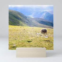 Sheep in the Mountains Mini Art Print