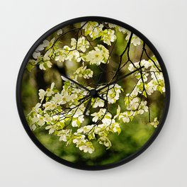 Painted Dogwoods Wall Clock