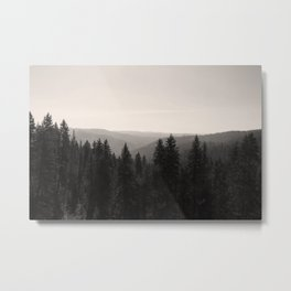 Sepia Tree Lined Valley Photography Print Metal Print