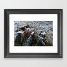 Stump & Frost Framed Art Print