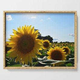 Sunflowers & Sunshine Serving Tray