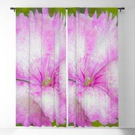 Soft Petals Blackout Curtain