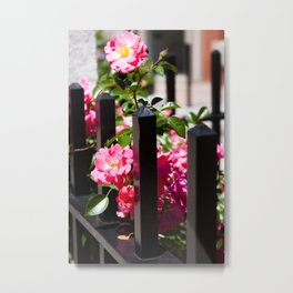 Flowers and Wrought Iron Metal Print