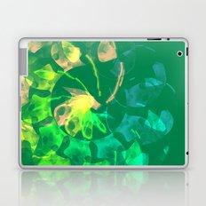 Garden Spiral Laptop & iPad Skin