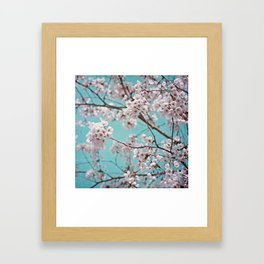 blossoms all over ~ color option teal Framed Art Print