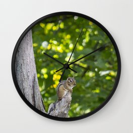 Chipmunk on a Tree Wall Clock