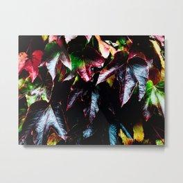 Variations autumn Metal Print