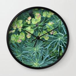"Euphorbia Cyparissias ""Fens Ruby"" Wall Clock"