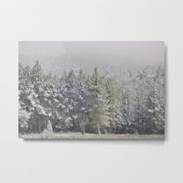 """""""Into the woods"""". At 2.500 meters hight Metal Print"""