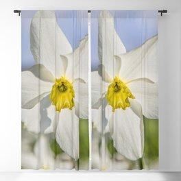 Spring Flora Blackout Curtain