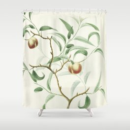 The Golden Apples of the Sun Shower Curtain