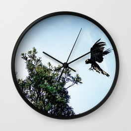 Yellow-Tailed Black Cockatoo Jumping Between Trees Wall Clock