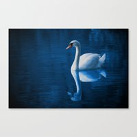 swan Canvas Prints featuring Swan by Spooky Dooky