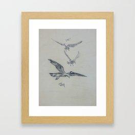 Seagulls in Flight 2 Framed Art Print