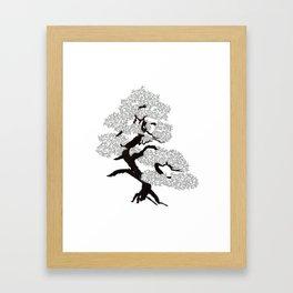 pine dummy #47 Framed Art Print