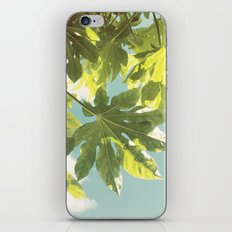 Fig Leaves iPhone Skin