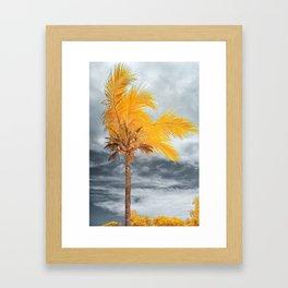 Coconut Tree Framed Art Print