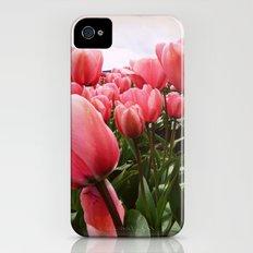 Tulips Slim Case iPhone (4, 4s)