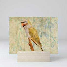 Derbyan Parakeet I Mini Art Print
