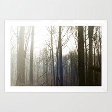 Winter 4 Art Print