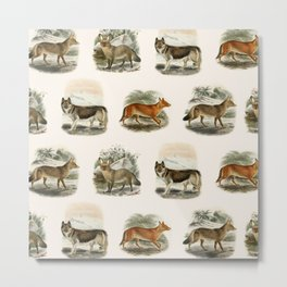 Wild Dogs Metal Print
