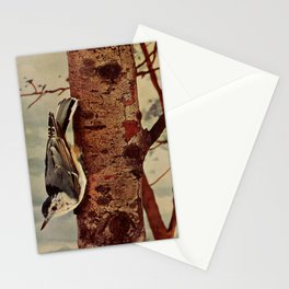 Neltje Blanchan - Bird Neighbours (1903) - White-Breasted Nuthatch Stationery Cards