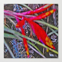 Bromeliad in the Cathedral Canvas Print
