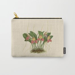 File:R. Warner & B.S. Williams - The Orchid Album - vol 01 - plate 005 Carry-All Pouch