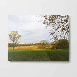 Autumn Fields and Trees Metal Print
