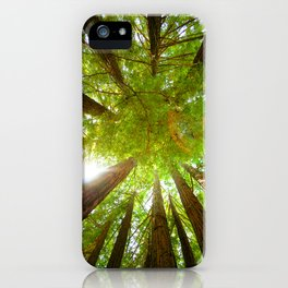 Ring of Redwoods iPhone Case