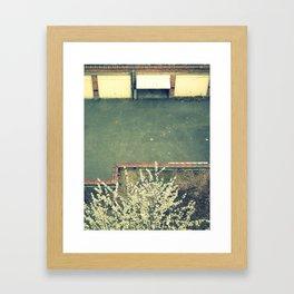 back yard. Framed Art Print