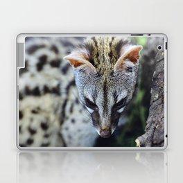 """Beautiful Genet"". Wildlife Laptop & iPad Skin"