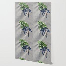 Shoreline Shadow 2 Wallpaper