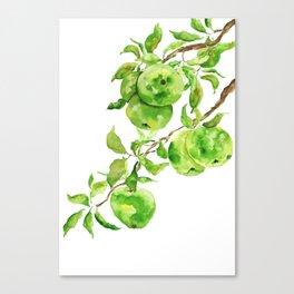 green apple watercolor Canvas Print