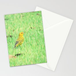 Yellow canary in grass Stationery Cards
