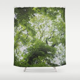 Up in the Trees Above Shower Curtain
