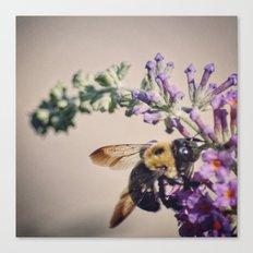 Bee-autiful Canvas Print