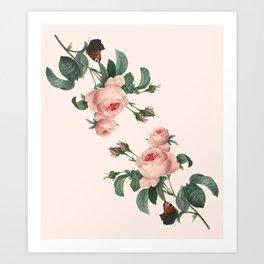 Butterflies in the Rose Garden Art Print