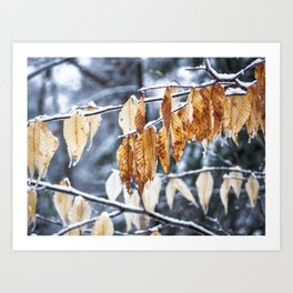 Snowy March Art Print