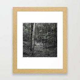rbdlc 003 Framed Art Print