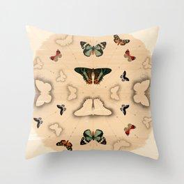 Butterfly Coordinates Throw Pillow