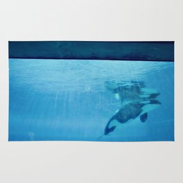 Orca Of The Ocean Rug