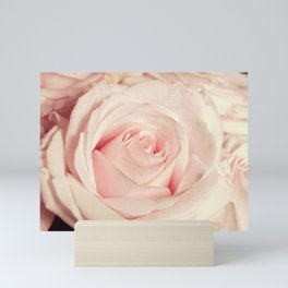 Pink rose photo. Blush flower photography. Botanical feminine decor. Floral Gift for her Mini Art Print