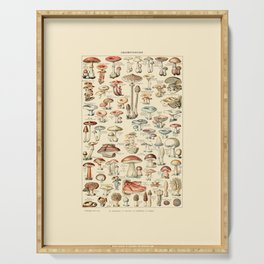 Trippy Vintage Mushroom Chart // Champignons by Adolphe Millot 19th Century Science Artwork Serving Tray