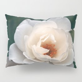 Late Autumn Rose #6 Pillow Sham