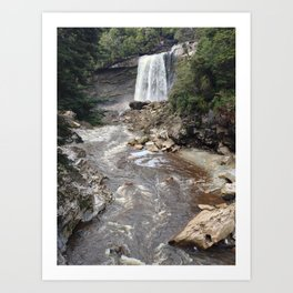 Mangatini Falls Art Print