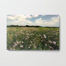 Asylum Lake Fields Metal Print